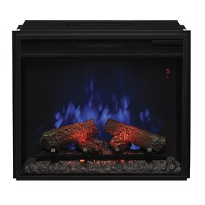 Lincolnville Traditional Electric Fireplace Insert by Darby Home Co
