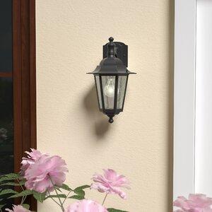 Mayer 1-Light Outdoor Wall Lantern