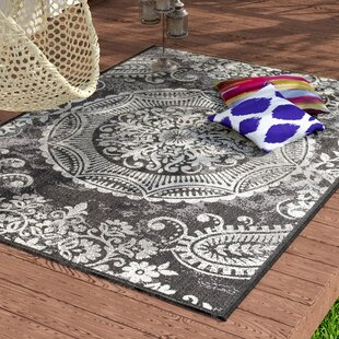 Outdoor Rugs For Steps Wayfair