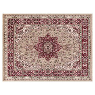 Craster Arms Beige/Red Rug by Astoria Grand