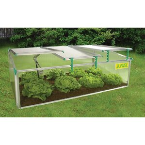 BioStar 2.6 Ft. W X 4.92 Ft. D Cold Frame Greenhouse