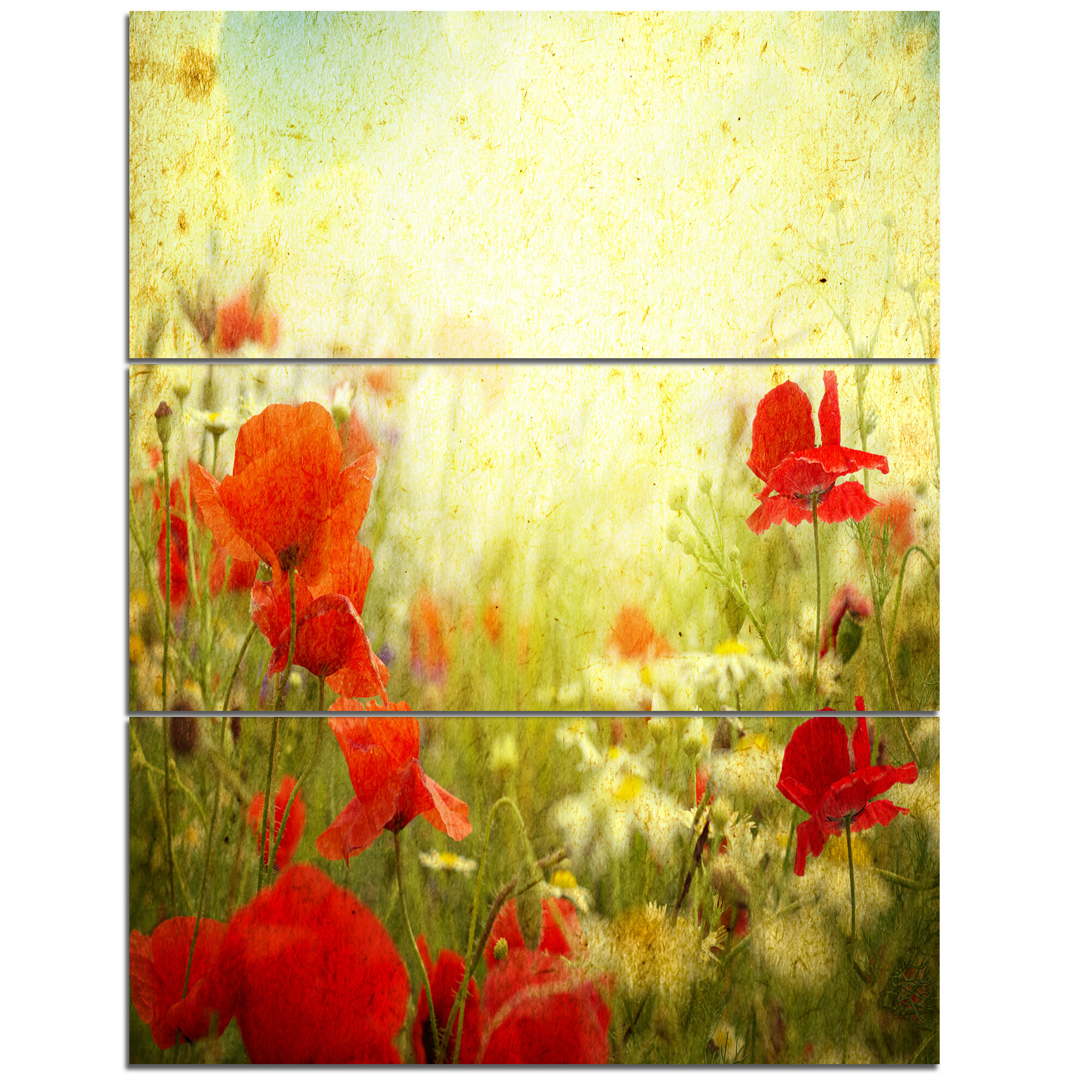 Old Fashioned Red Poppies Canvas Wall Art Photo - The Wall Art ...
