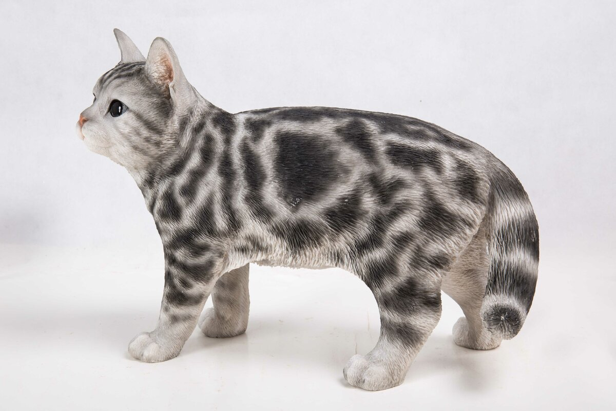 Hi Line Gift Ltd Standing American Shorthair Cat Statue & Reviews