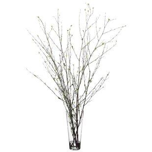 Decorative Tree Branches Wayfair