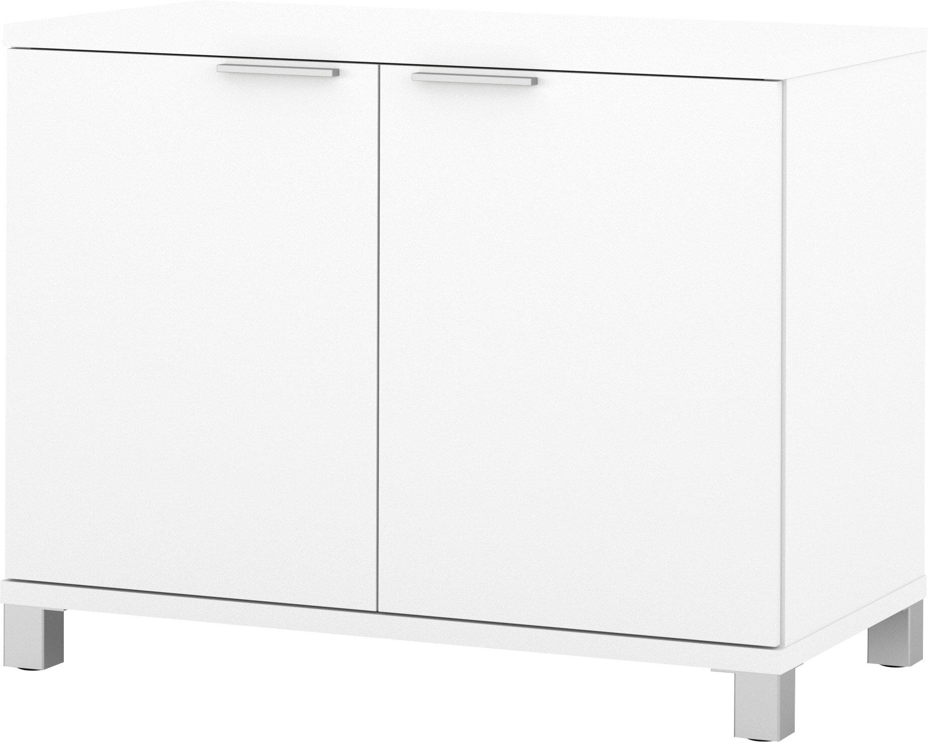 Ariana 2 Door Storage Cabinet Reviews Allmodern