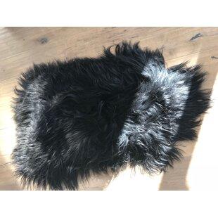 Island Sheepskin Black Rug by MGRugsSkinsMore