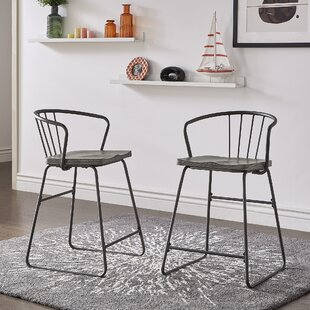 Timmins Iron 24.5 Bar Stool (Set of 2)