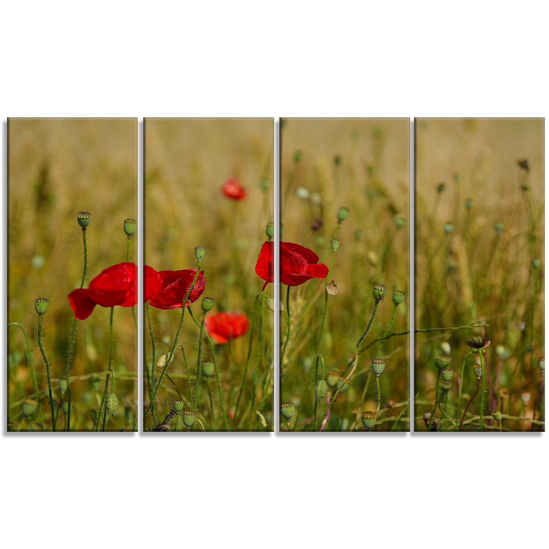DesignArt \'Red Poppy Flower Field Background\' 4 Piece Photographic ...