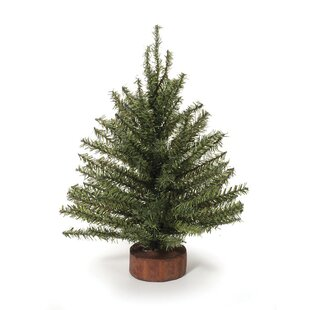 mixed pine tabletop tree