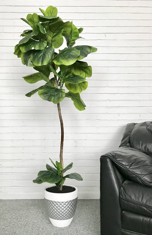 Fiddle Leaf Fig Floor Palm Tree In Pot Amp Reviews Joss Amp Main