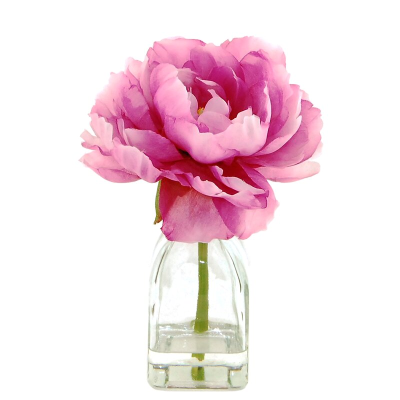 House of Hampton Peony in a Glass Jar with Faux Water & Reviews ...