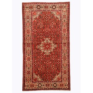 Hosseinabad Hand-Knotted Rust Area Rug
