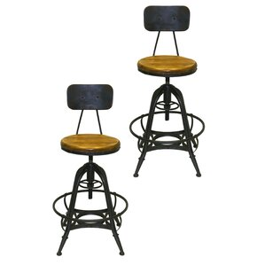Bruce Adjustable Height Swivel Bar Stool (Set of 2) by Pangea Home