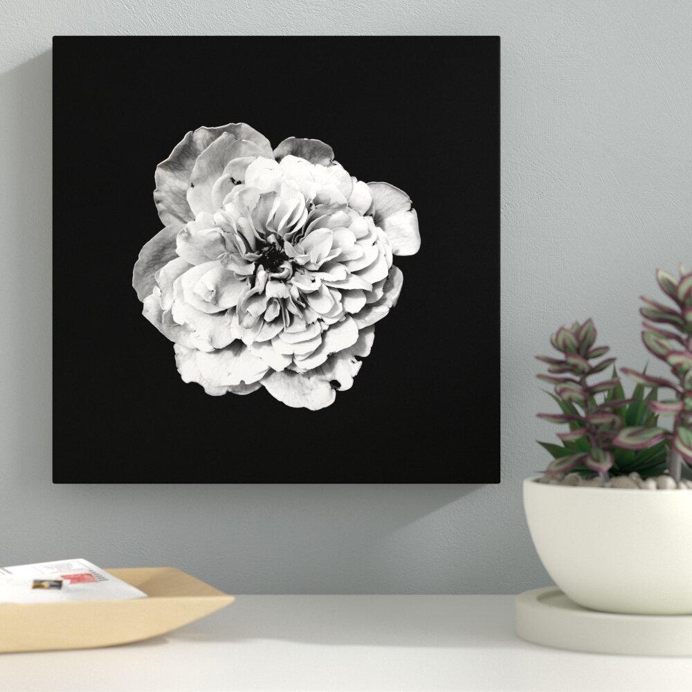 Ebern Designs White Flower On Black Background Photographic Print