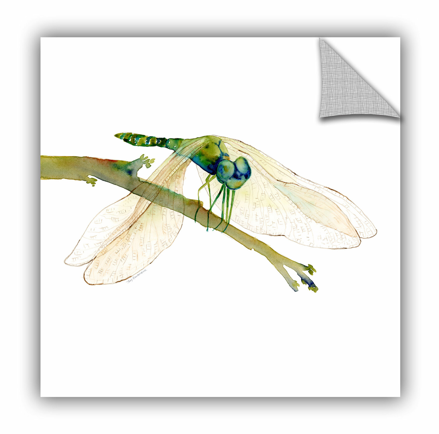 Artwall dragonfly sq wall mural wayfair for Dragonfly mural