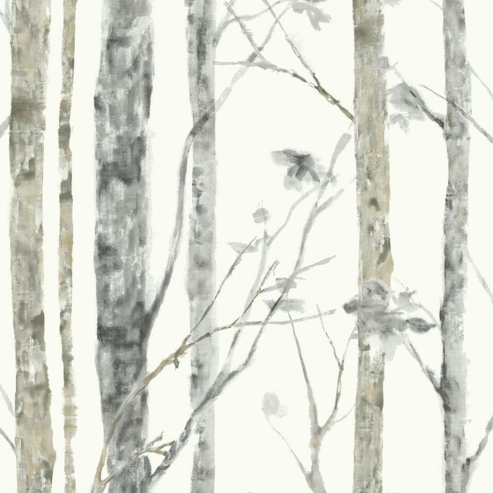 f8729d88edba Birch Tree Peel and Stick 20.5' x 16.5