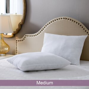 Wayfair Basics Medium Pillow (Set of 2)