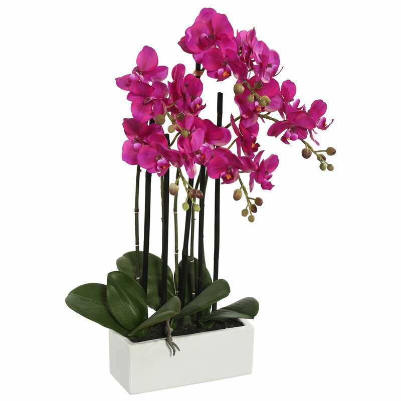 mercer41 artificial orchid flowers in vase reviews wayfair rh wayfair com orchid with metal vase orchid vase with holes