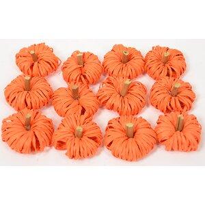 Bagged Raffia Pumpkin (Set of 6)