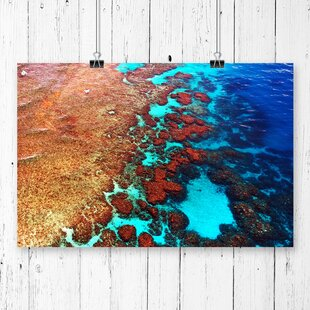 Coral Great Barrier Reef Graphic Art