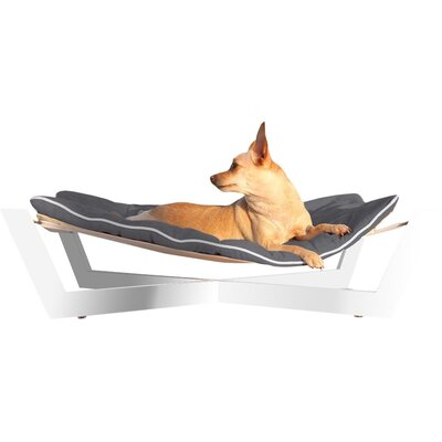 tricia pet hammock bambu nautical pet hammock  u0026 reviews   allmodern  rh   allmodern