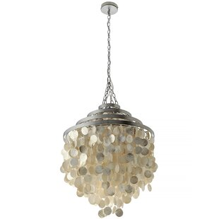 Oyster shell chandelier wayfair save aloadofball Image collections