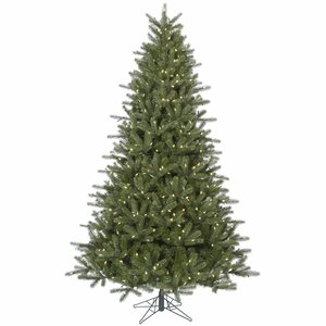 4.5' Kennedy Fir Christmas Tree with 250 Warm White LEDs and Stand