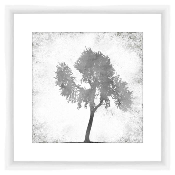 Ptm Black And White Tree Framed Graphic Art Wayfair