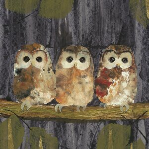 'Three Tawny Owls' Painting Print on Canvas
