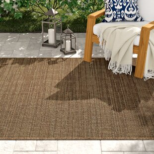 Alber Chestnut Brown Indoor Outdoor Area Rug