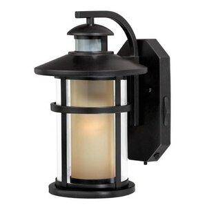 Swarna 1-Light Outdoor Wall Lantern