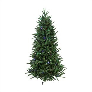75 green pine trees artificial christmas tree with clear and clearwhite lights - Barcana Christmas Trees
