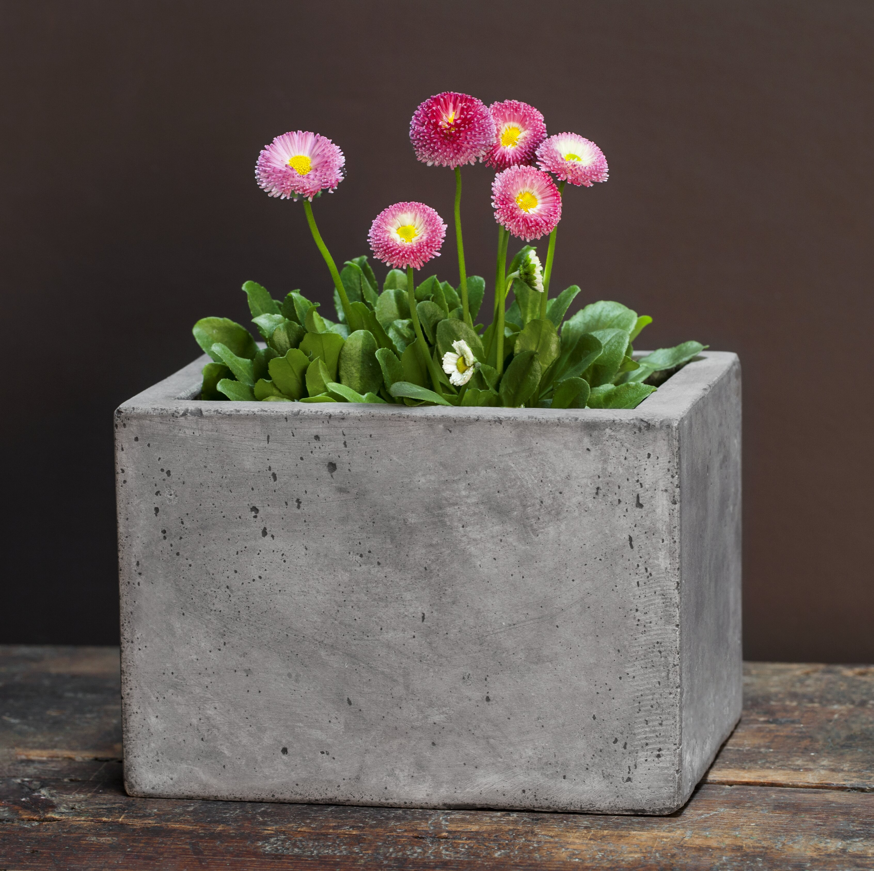 youtube diy planter watch cement