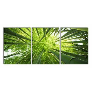 Bamboo Wall Art | Wayfair co uk