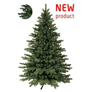 Künstlicher Weihnachtsbaum Wie Echt.Weihnachtsbäume Zum Verlieben Wayfair De