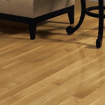 "Dundee 3-1/4"" Solid Oak Hardwood Flooring Bruce Flooring Finish: Dune"