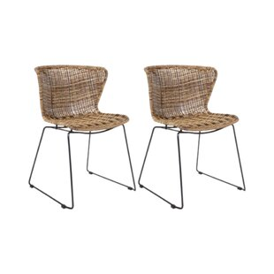Wings Dining Chair (Set Of 2)