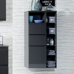 Cardiff 65 x 130cm Wall Mounted Cabinet by Held Möbel