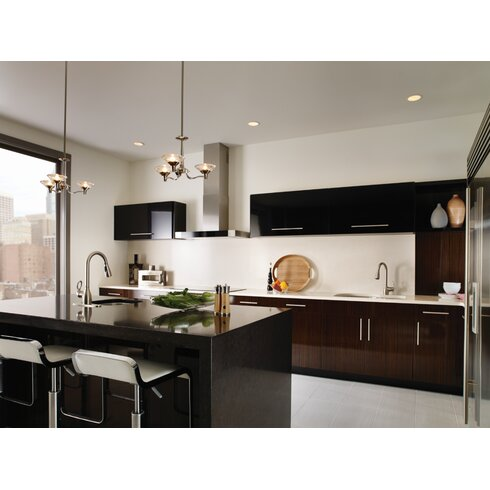 Kleo Single Handle Kitchen Faucet With Reflex™ And Duralock™