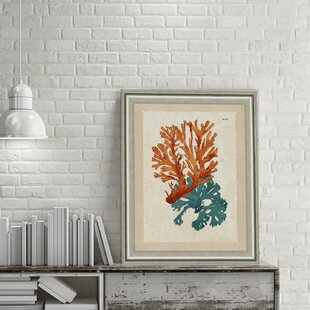 Teal And Orange Seaweed Ii Framed Graphic Art Print
