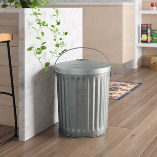 Trash Cans Youll Love In 2019 Wayfair