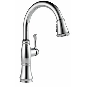 cassidy single handle pull down kitchen faucet with spray