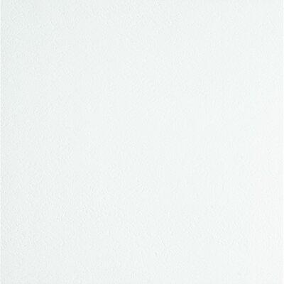 White Amp Off White Vinyl Flooring You Ll Love Wayfair