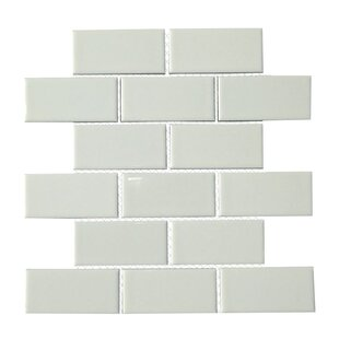Clique 2 X 4 Porcelain Subway Tile In White