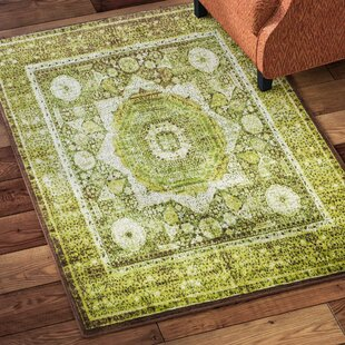 Rugs For Laminate Floors Wayfair