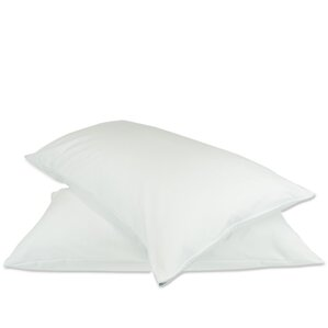 Plain Zipper Pillow Protector (Set of 2) by Alwyn Home