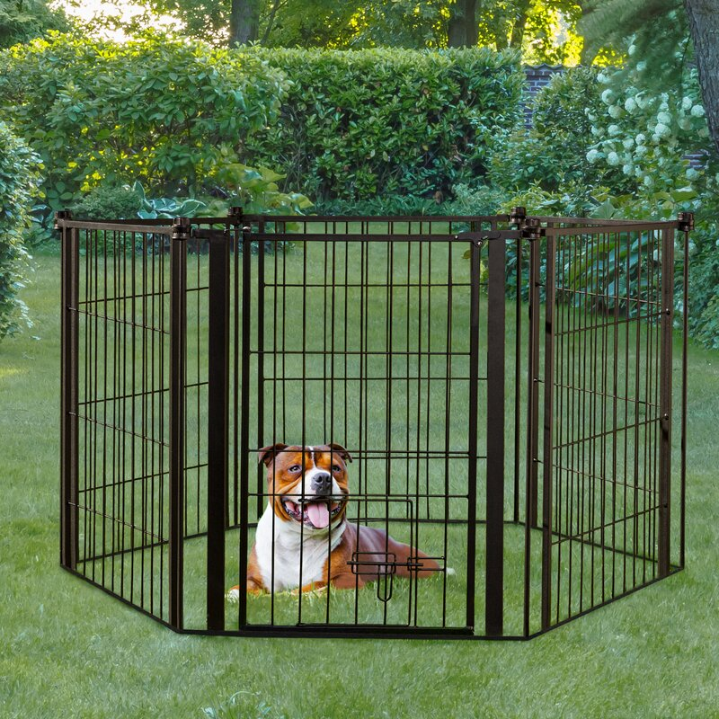 Carlson Pet Indoor/Outdoor Super Dog Gate and Play Yard | Wayfair