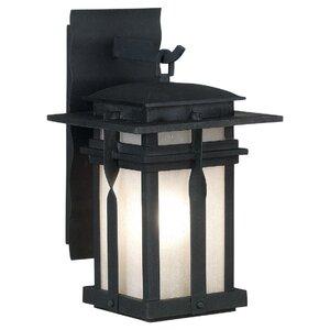 Carrington 1-Light Outdoor Wall Lantern