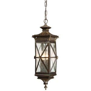 Baylis 4-Light Outdoor Hanging Lantern
