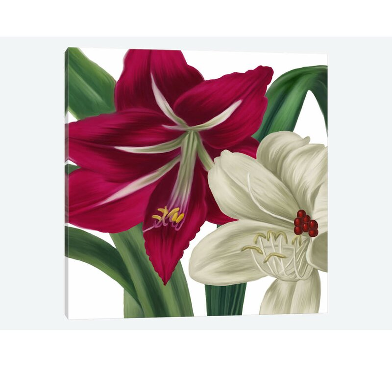 'Christmas Amaryllis I' Graphic Art Print on Wrapped Canvas. '
